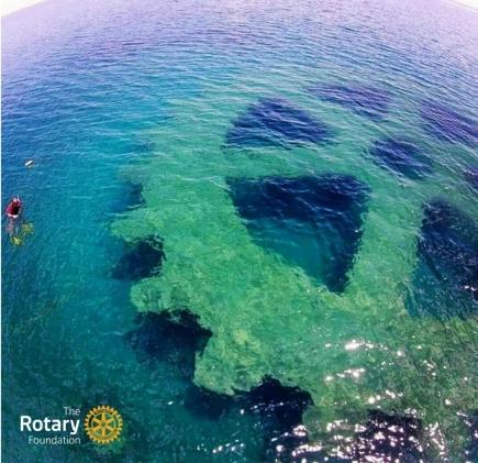 he Rotary Foundation vergrössert die Wirkung von Rotary-Projekten – so wie eines der grössten Rotary-Räder, das auf den Philippinen als künstliches Riff dient.